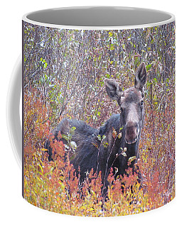 Happy Moose Coffee Mug by Elizabeth Dow