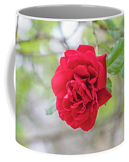 Coffee Mug featuring the photograph Happy Red Flower by Raphael Lopez