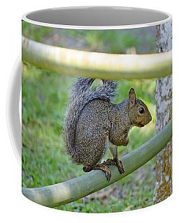Happy Squirrel Coffee Mug