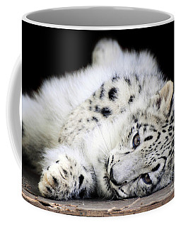 Hara...snow Leopard Cub Coffee Mug