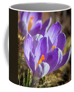 Coffee Mug featuring the photograph Harbinger by Mark Mille