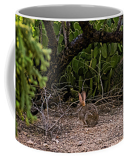 Coffee Mug featuring the photograph Hare Habitat H22 by Mark Myhaver