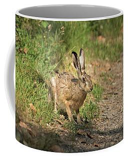 Hare In The Woods Coffee Mug