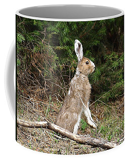Coffee Mug featuring the photograph Hare That by DeeLon Merritt
