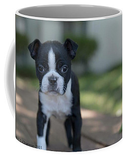 Harley As A Puppy Coffee Mug