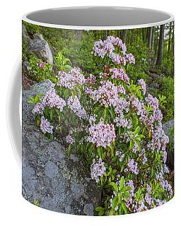 Harriman Pink And White Mountain Laurel Coffee Mug