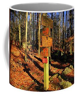Coffee Mug featuring the photograph Harriman State Park Trail Sign by Raymond Salani III