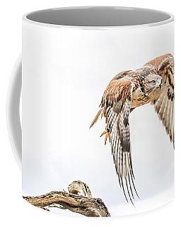 Harris Hawk #1 Coffee Mug