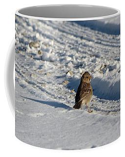 Harris's Sparrow Coffee Mug by James Petersen