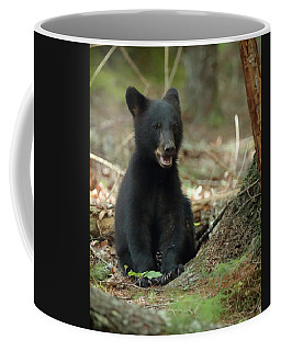 Have You Seen My Mother Coffee Mug