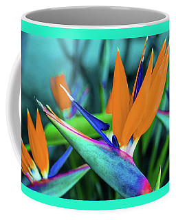 Coffee Mug featuring the photograph Hawaii Bird Of Paradise Flowers by D Davila