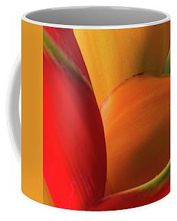 Hawaii Mn6414 Coffee Mug