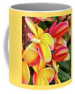 Coffee Mug featuring the photograph Hawaii Plumeria Flowers In Bloom by D Davila
