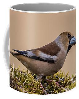 Hawfinch's Beak Coffee Mug