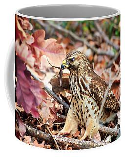 Hawk Catches Prey Coffee Mug