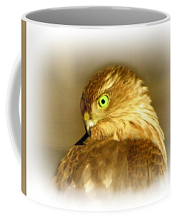 Hawk Eye Coffee Mug