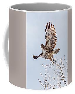 Hawk Lift Off The Snow Coffee Mug