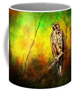 Hawk On Branch Coffee Mug