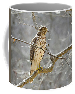 Coffee Mug featuring the photograph Hawk On Lookout by George Randy Bass