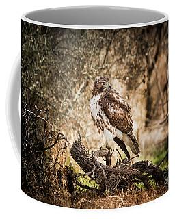 Hawk Through A Thicket Coffee Mug