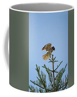 Hawk With Regal Landing Coffee Mug
