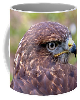 Hawks Eye View Coffee Mug