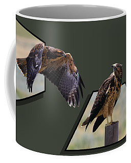 Hawks Coffee Mug