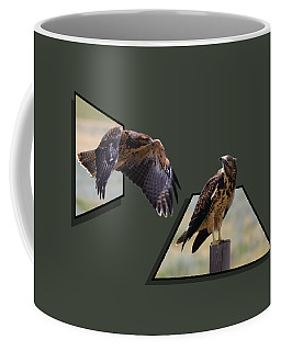 Coffee Mug featuring the photograph Hawks by Shane Bechler