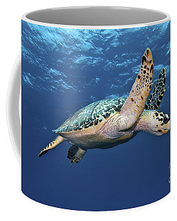 Hawksbill Sea Turtle In Mid-water Coffee Mug