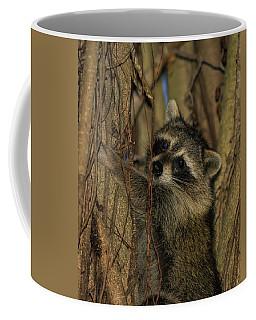 He Found My Nook Coffee Mug