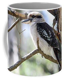 Coffee Mug featuring the photograph He Sings The Song Of The Bush by Linda Lees