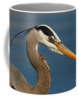 Head Of A Great Blue Heron Coffee Mug