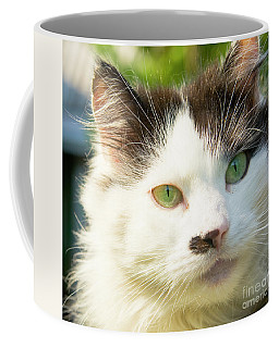 Head Of Cat Coffee Mug by Irina Afonskaya