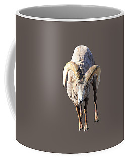 Head-on Coffee Mug
