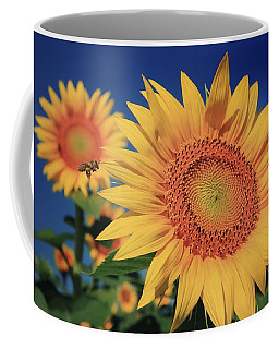 Coffee Mug featuring the photograph Heading For Gold by Chris Berry