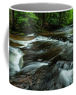 Coffee Mug featuring the photograph Headwaters Of Williams River  by Thomas R Fletcher