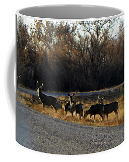 Heard Of Deer Coffee Mug
