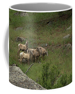 Hearding Goats Coffee Mug