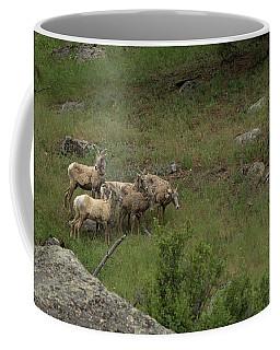 Hearding Goats Coffee Mug