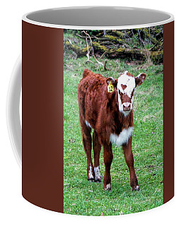 Coffee Mug featuring the photograph Heart by Cricket Hackmann