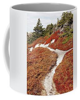 Heather Run Coffee Mug