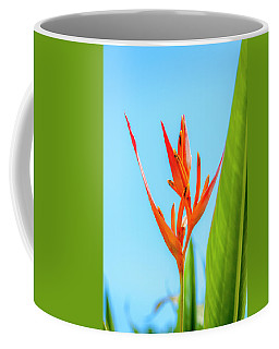 Heliconia Flower Coffee Mug