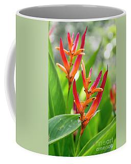 Heliconia Psittacorum Coffee Mug
