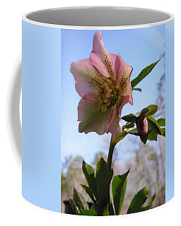 Hellebore Morning Coffee Mug