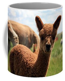 Hello Baby Coffee Mug