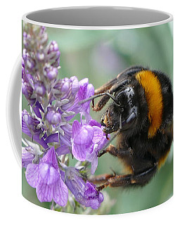 Coffee Mug featuring the photograph Hello Flower by Ivana Westin