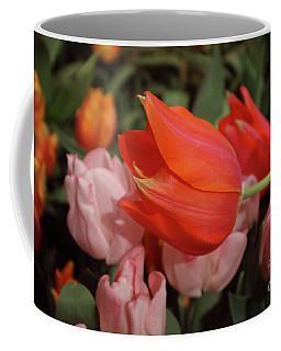 Hello Coffee Mug by Sandy Moulder