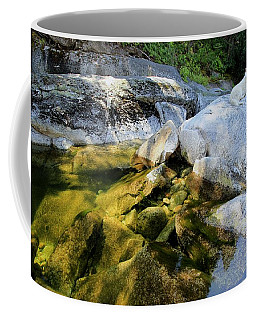 Coffee Mug featuring the photograph Hello by Sean Sarsfield