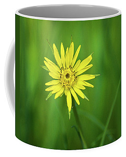 Coffee Mug featuring the photograph Hello Wild Yellow by Bill Pevlor