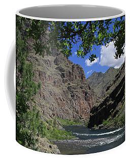 Hells Canyon Snake River Coffee Mug